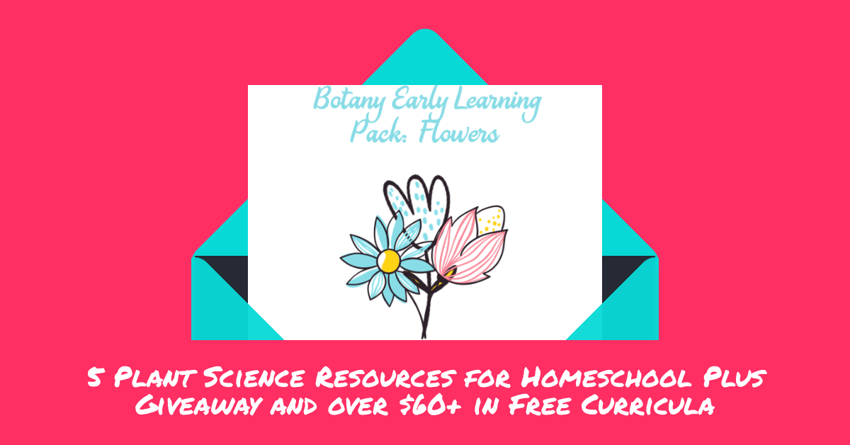 The Early Learning Botany Flower is for those children wanting to do science with the big kids, but not yet able to understand all the concepts. This set has a Biblical Creation backbone, with a few hands on flower activities. There are tracing pages, coloring and comparison activities in this pack. I am working on more pages, but started with these before all the flowers are gone for the season. I would love to hear what you think of them.